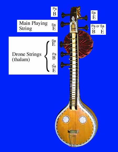 veena_strings